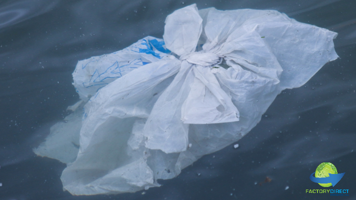 Take the Quiz to Find Out if You Are a Plastic Pollution Fighter!